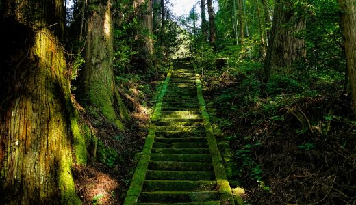 日本人は神や死後の世界を信じているのか? 日本の神社仏閣の数とコンビニの数の比較