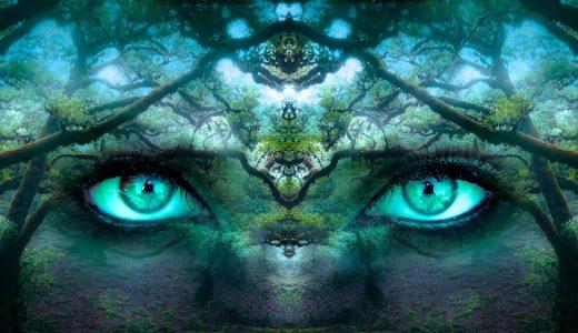 瞑想に入るコツ 瞑想には入らない? 瞑想はやってくるだけの話