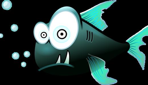 覚醒意識と水と魚とインパクト